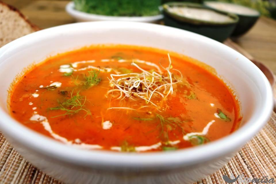 Fenyklovo-rajčatová polévka